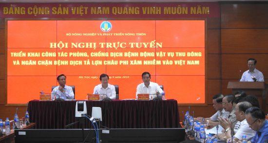 Hội nghị trực tuyến triển khai công tác phòng, chống dịch bệnh động vật vụ Thu Đông và ngăn chặn bệnh Dịch tả lợn Châu Phi xâm nhiễm vào Việt Nam