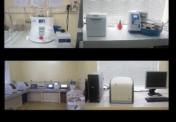 8 phòng thí nghiệm xét nghiệm miễn phí  bệnh dịch tả Châu Phi